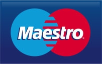 Maestro Payment Icon